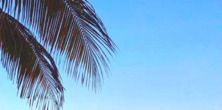 Море, закат, пляж, Майами, США