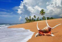 Шри-Ланка, Море, Пляж